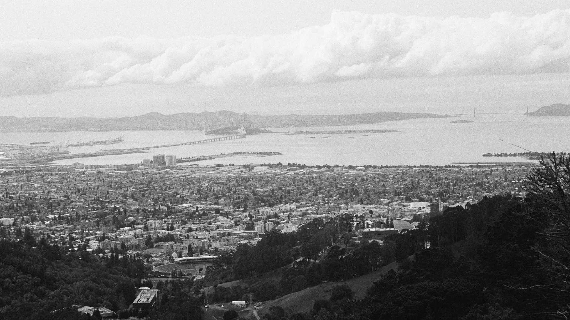 San Francisco Bay from the UC Berkeley Botanical Garden, March 2020