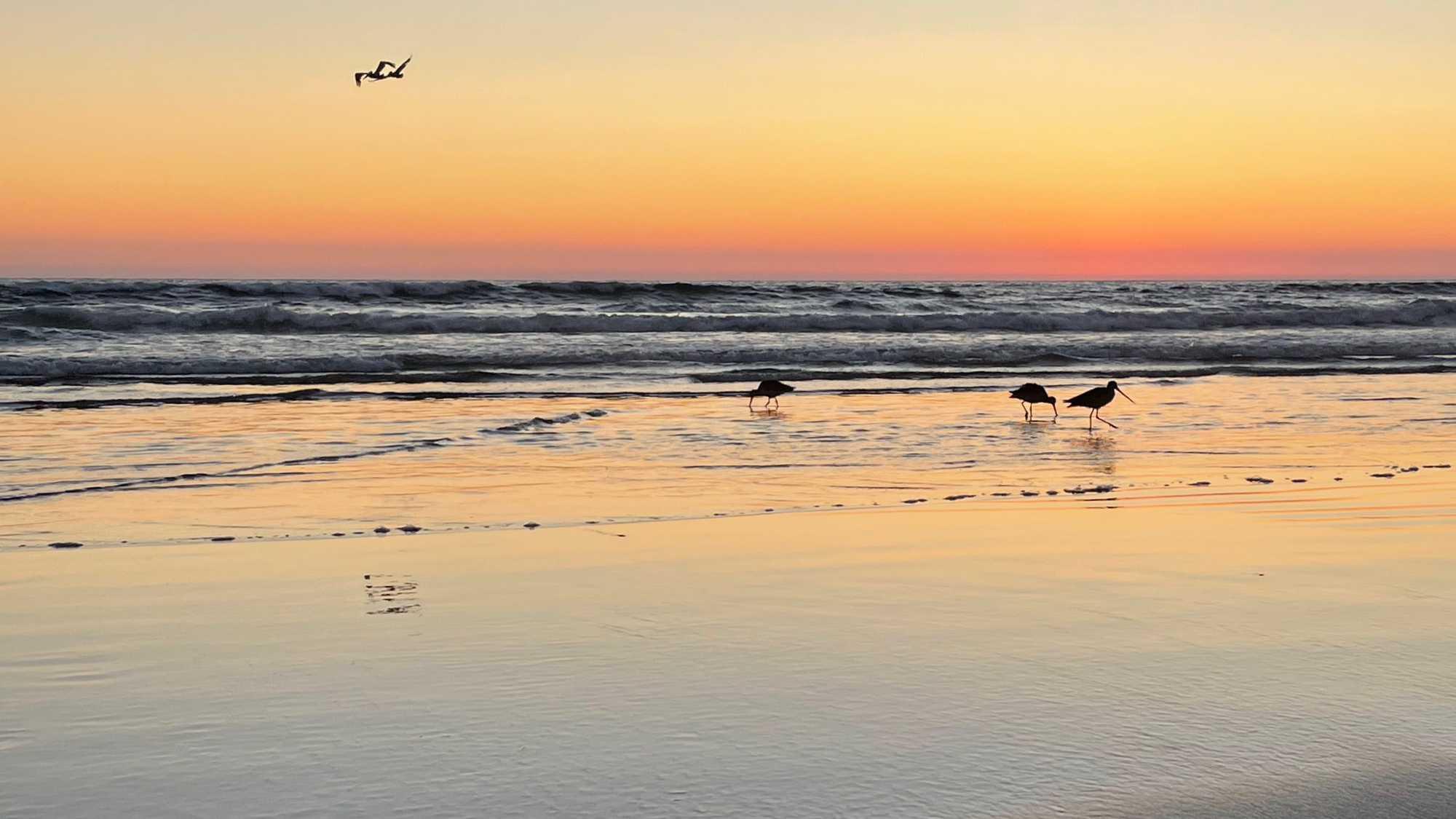 Sunset near Morro Bay, California, July 2021